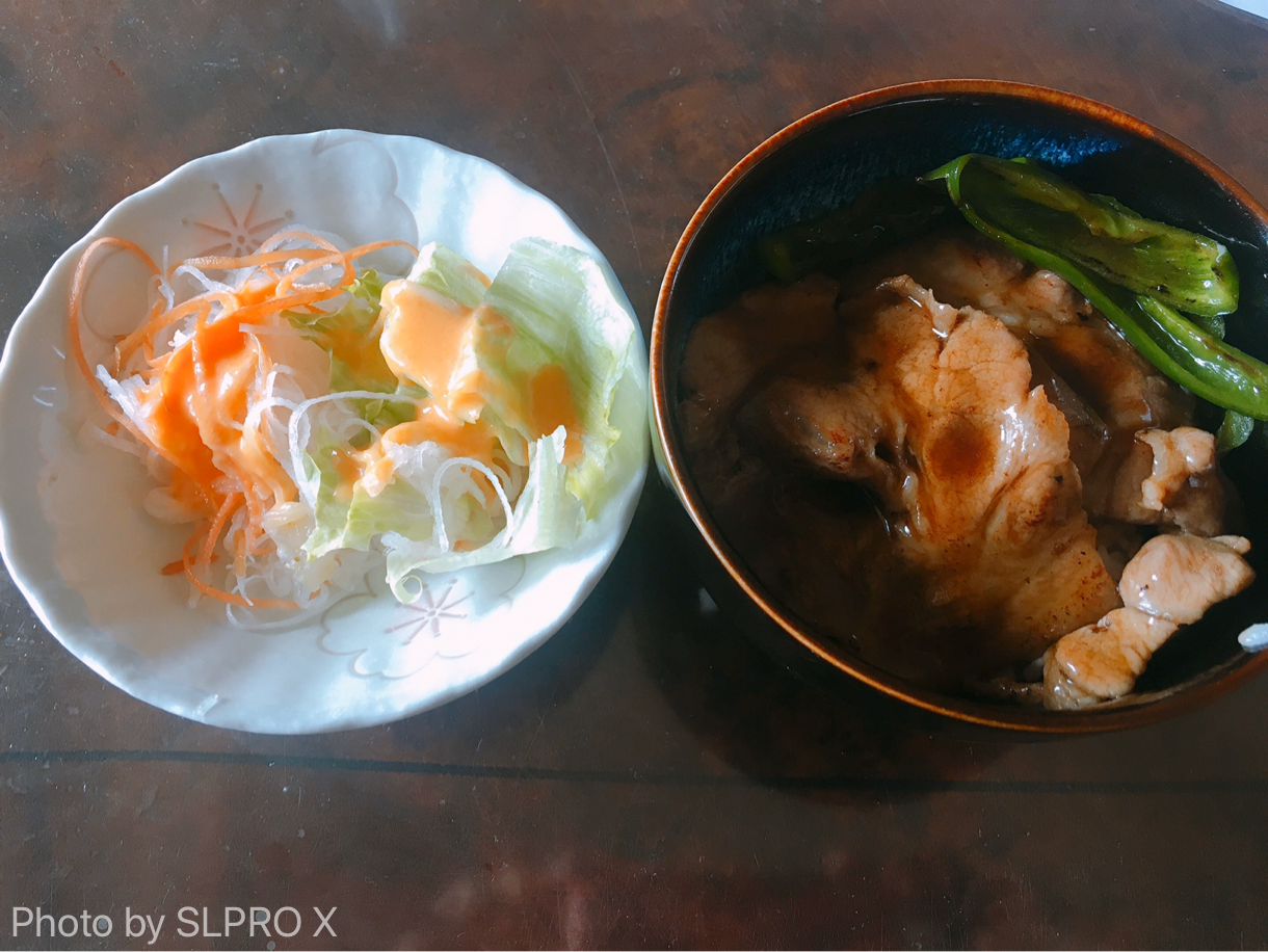 お肉、野菜炒め、サラダ